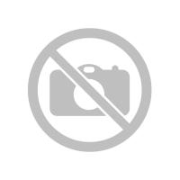 Sigur Модуль базовый на 50 идентификаторов